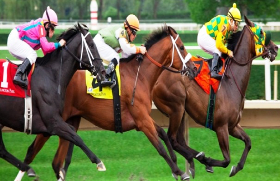 The Origins Of Horse Racing